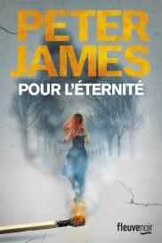 http://www.fleuve-editions.fr/livres-romans/livres/thriller-policier/pour-leternite-2/