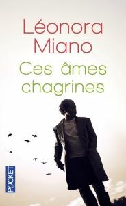 https://www.pocket.fr/tous-nos-livres/romans/romans-francais/ces_ames_chagrines-9782266223799/