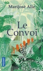 https://www.pocket.fr/tous-nos-livres/romans/romans-francais/le_convoi-9782266269414/