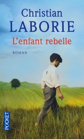 https://www.pocket.fr/tous-nos-livres/romans/terroir/lenfant_rebelle-9782266268370/